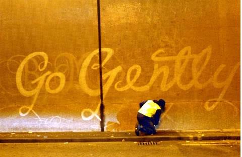 moose-reverse-graffiti.jpg